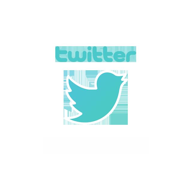 Link Twitter